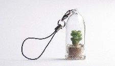 Breloc Pet Tree cu planta Blue Jade in interior